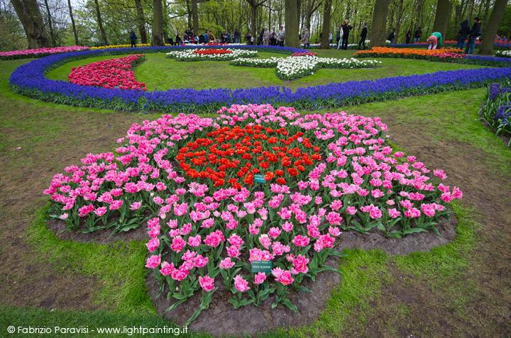 Diario Di Viaggio Olanda Per La Fioritura Dei Tulipani